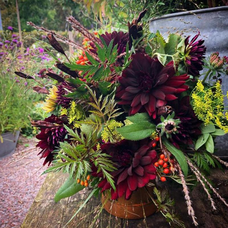 Kolme asiaa, jotka haluan tehdä puutarhassa tänä vuonna!